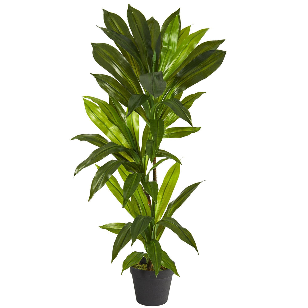 3' Dracaena Artificial Plant (Real Touch)