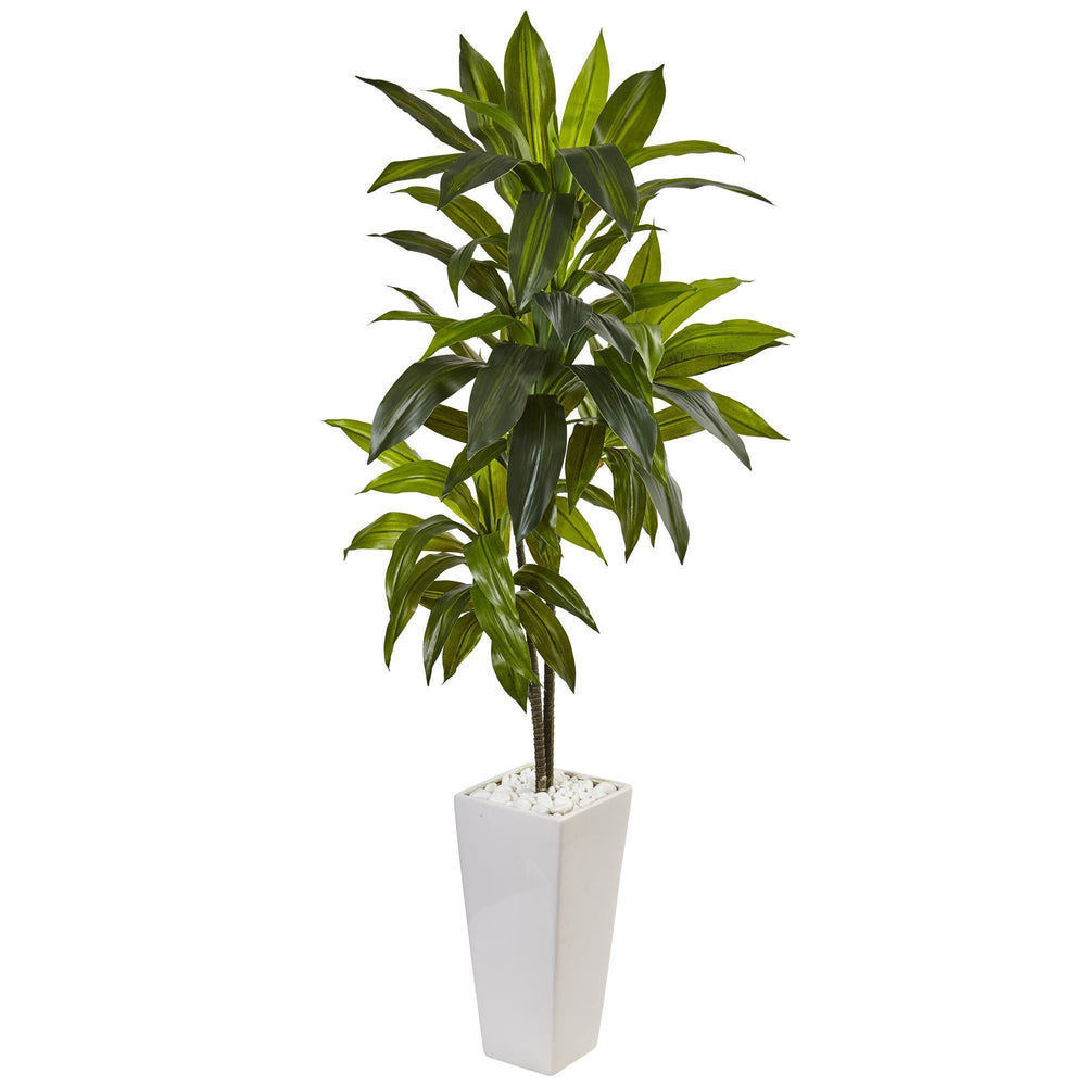3' Dracaena Plant in White Tower Planter