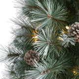 3' Frosted Tip British Columbia Mountain Pine Artificial Christmas Tree with 50 Clear Lights, Pine Cones and 112 Bendable Branches