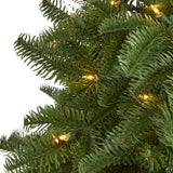 3' South Carolina Spruce Artificial Christmas Tree with 100 White Warm Light and 458 Bendable Branches