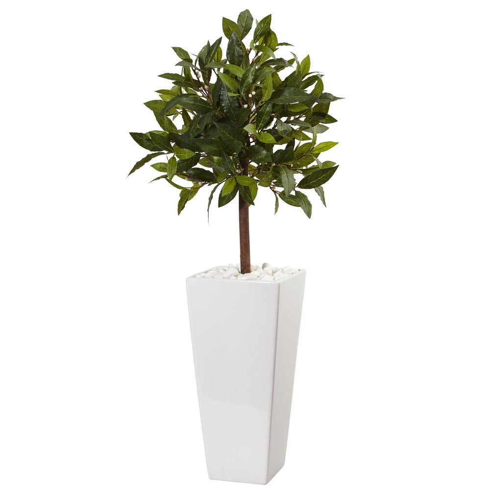 3' Sweet Bay Tree in White Tower Planter