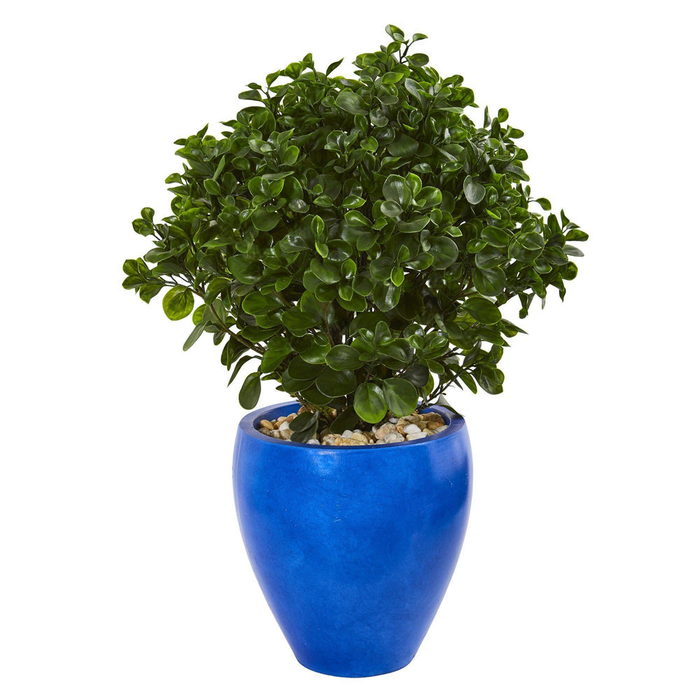 32 Peperomia Artificial Plant In Blue Planter Uv Resistant Indoor Outdoor Nearly Natural