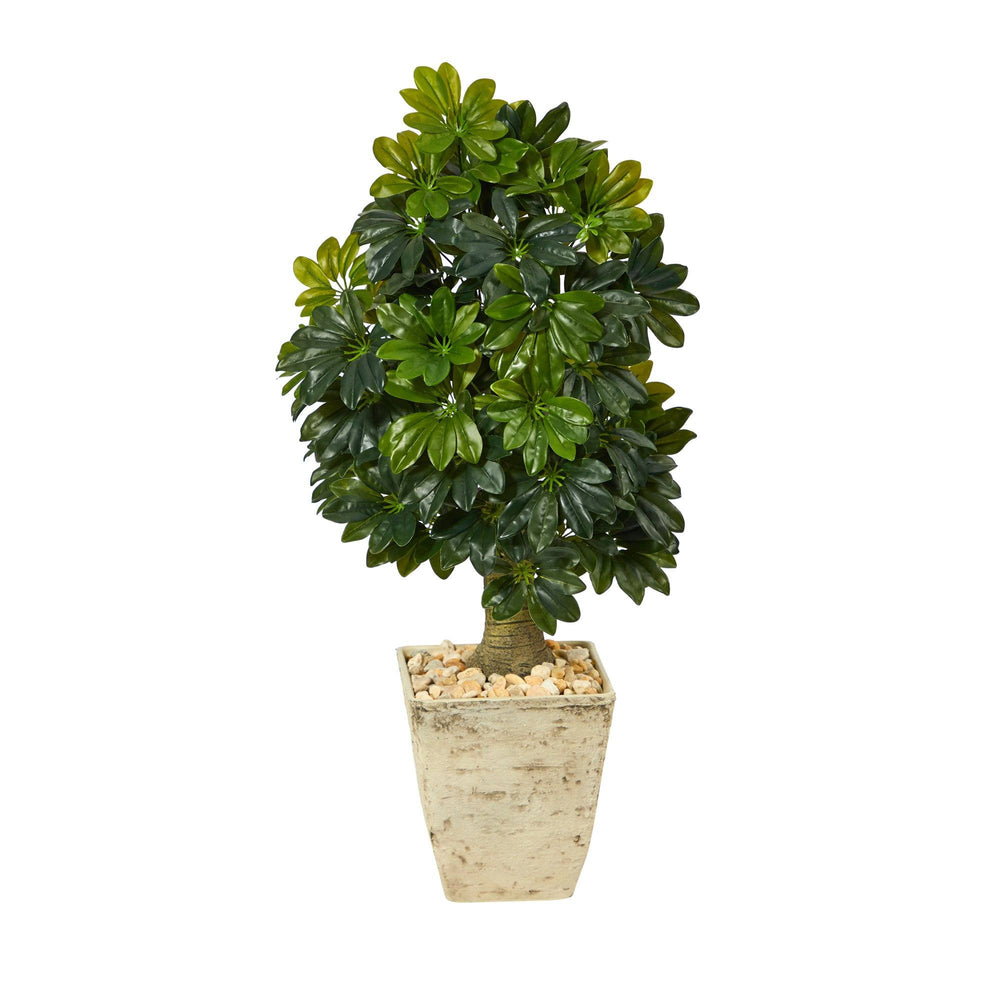3.5' Schefflera Artificial Tree in Country White Planter (Real Touch)
