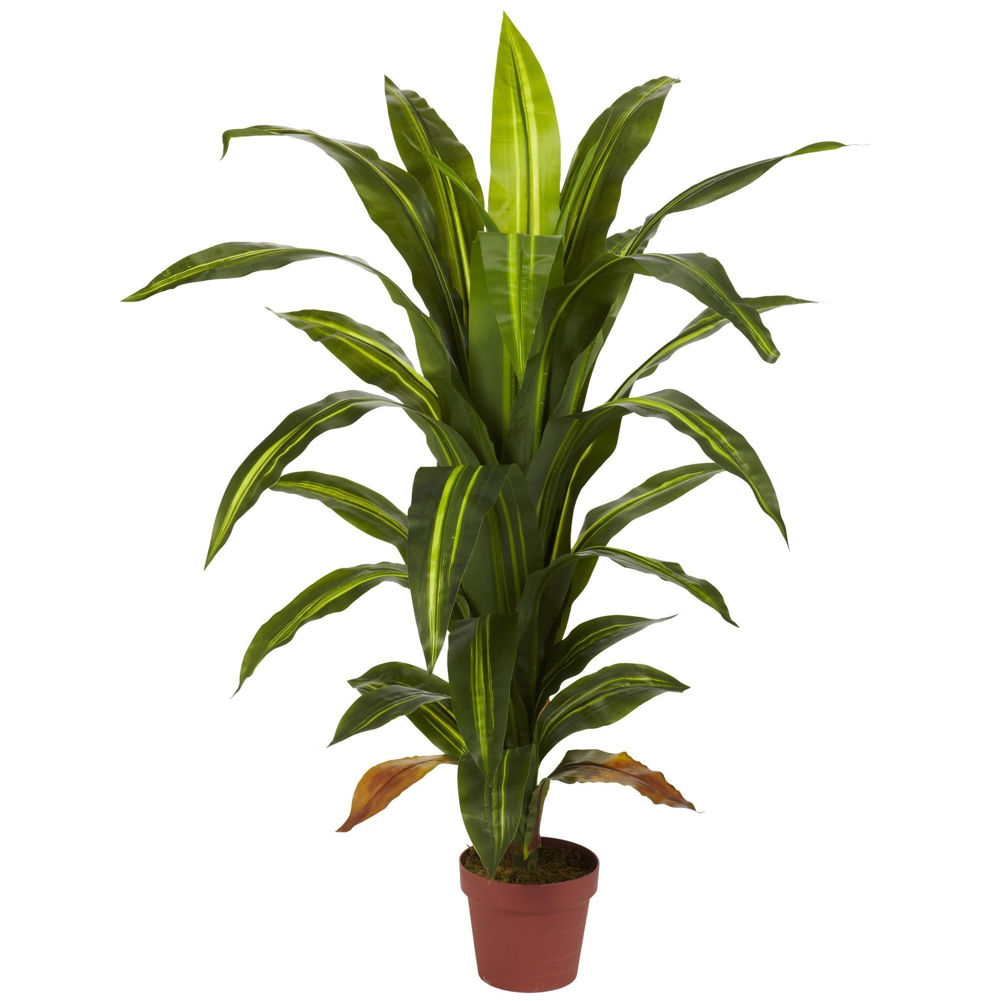 4 Dracaena Silk Plant Real Touch Nearly Natural