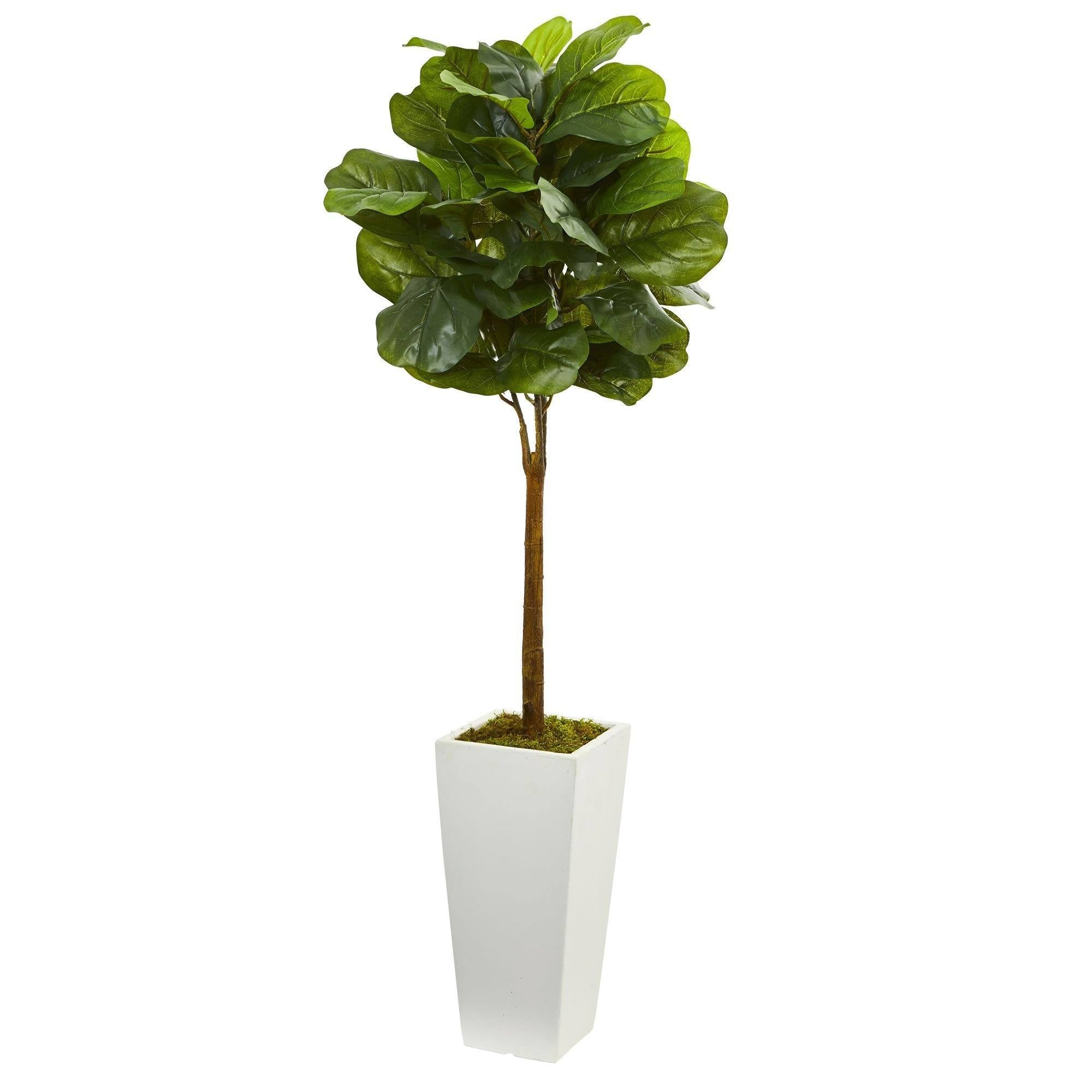 4 Fiddle Leaf Artificial Tree In White Tower Planter Nearly Natural