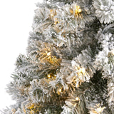 4' Flocked West Virginia Fir Artificial Christmas Tree with 100 Clear LED Lights