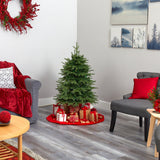 "4' Vancouver Fir ""Natural Look"" Artificial Christmas Tree with 250 Clear LED Lights and 814 Bendable Branches"