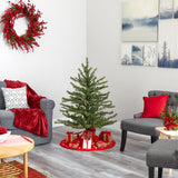 4' Vancouver Mountain Pine Artificial Christmas Tree with 100 Clear Lights and 374 Bendable Branches