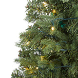 4' Vermont Fir Artificial Christmas Tree with 100 Clear LED Lights