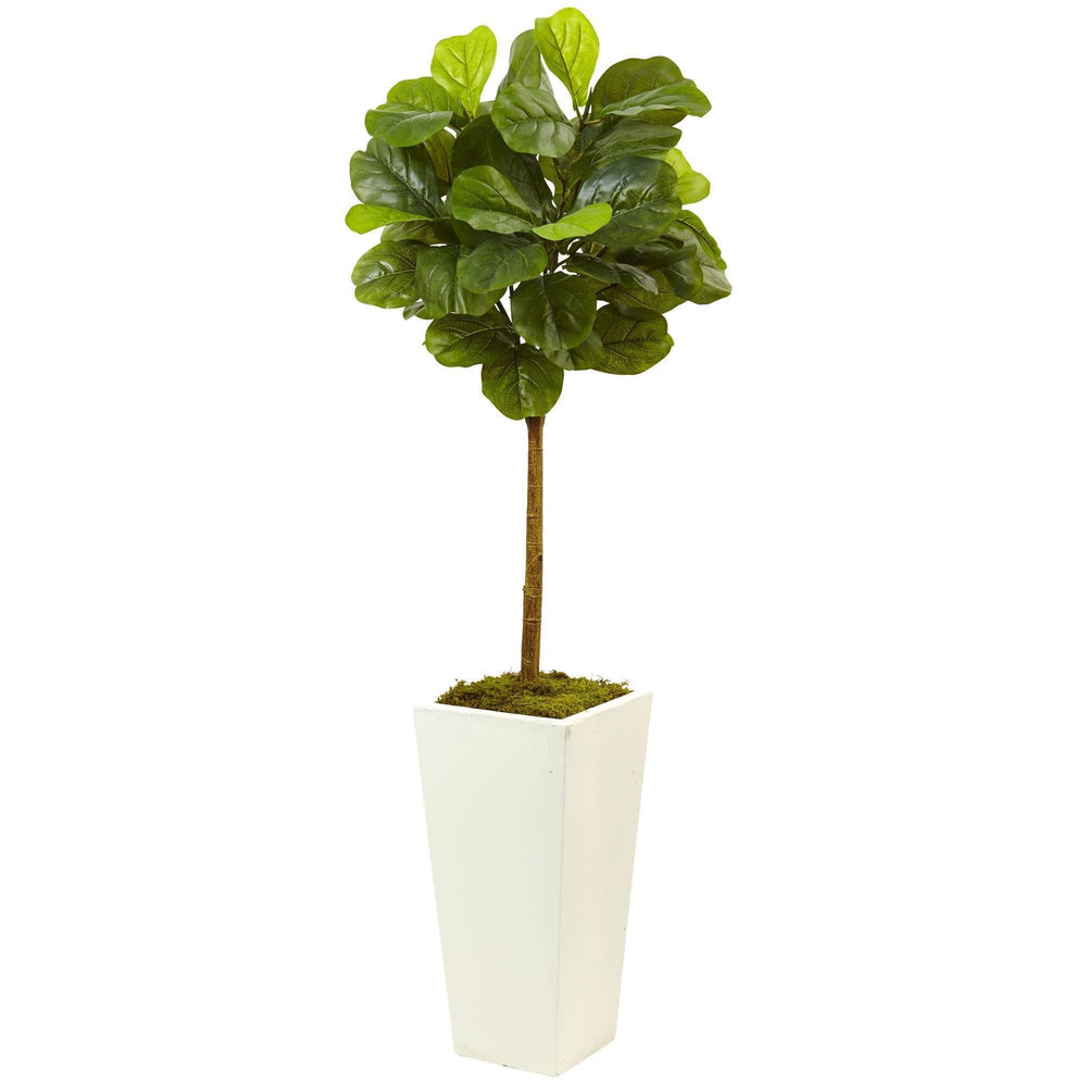 4.5' Fiddle Leaf Fig in White Planter (Real Touch)