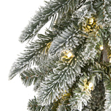 4.5' Flocked Washington Alpine Christmas Artificial Tree with 100 White Warm LED Lights and 285 Bendable Branches
