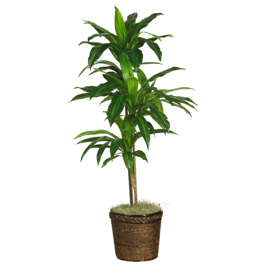 48 Dracaena W Basket Silk Plant Real Touch Nearly Natural