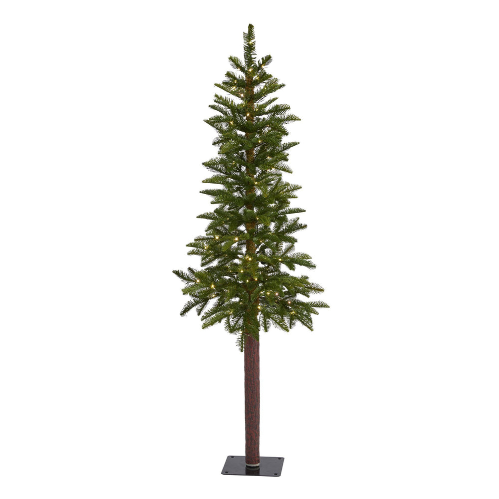 5' Alaskan Alpine Artificial Christmas Tree with 100 Clear Microdot (Multifunction) LED Lights and 92 Bendable Branches