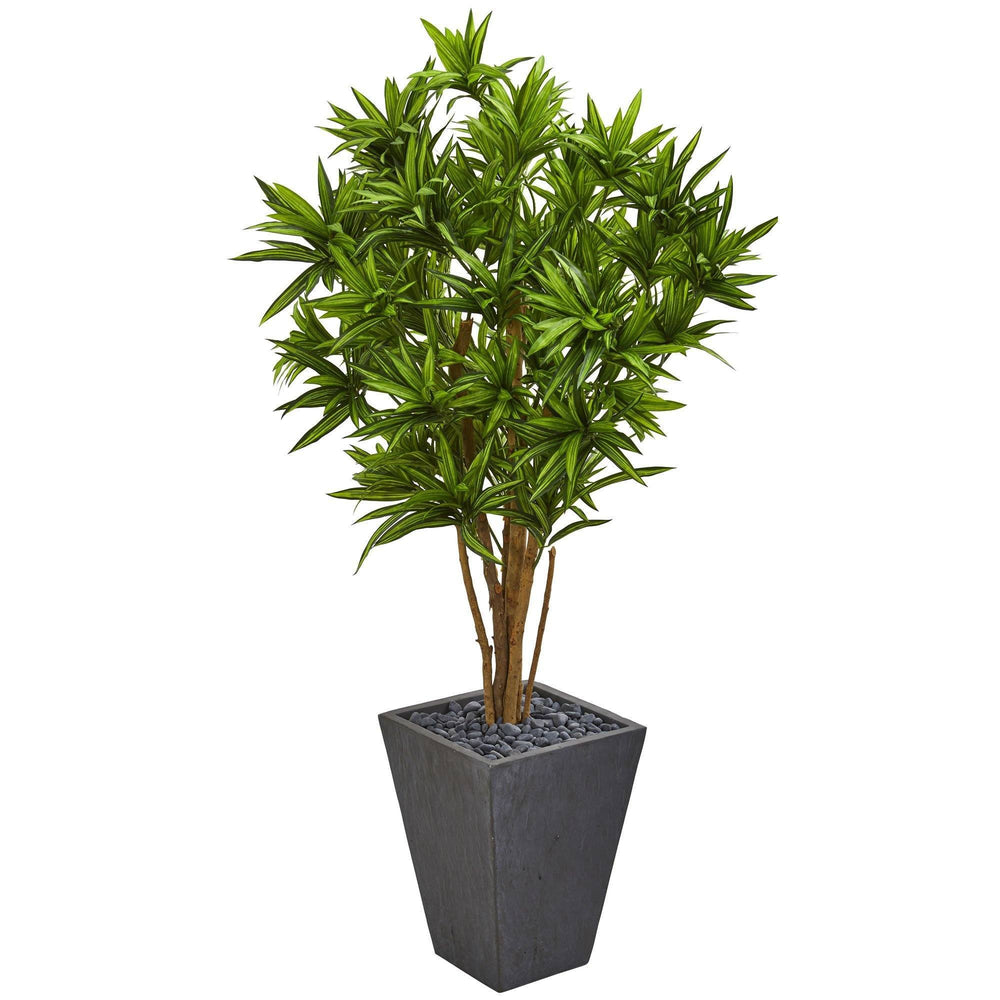 5' Dracaena Artificial Tree in Slate Finished Planter