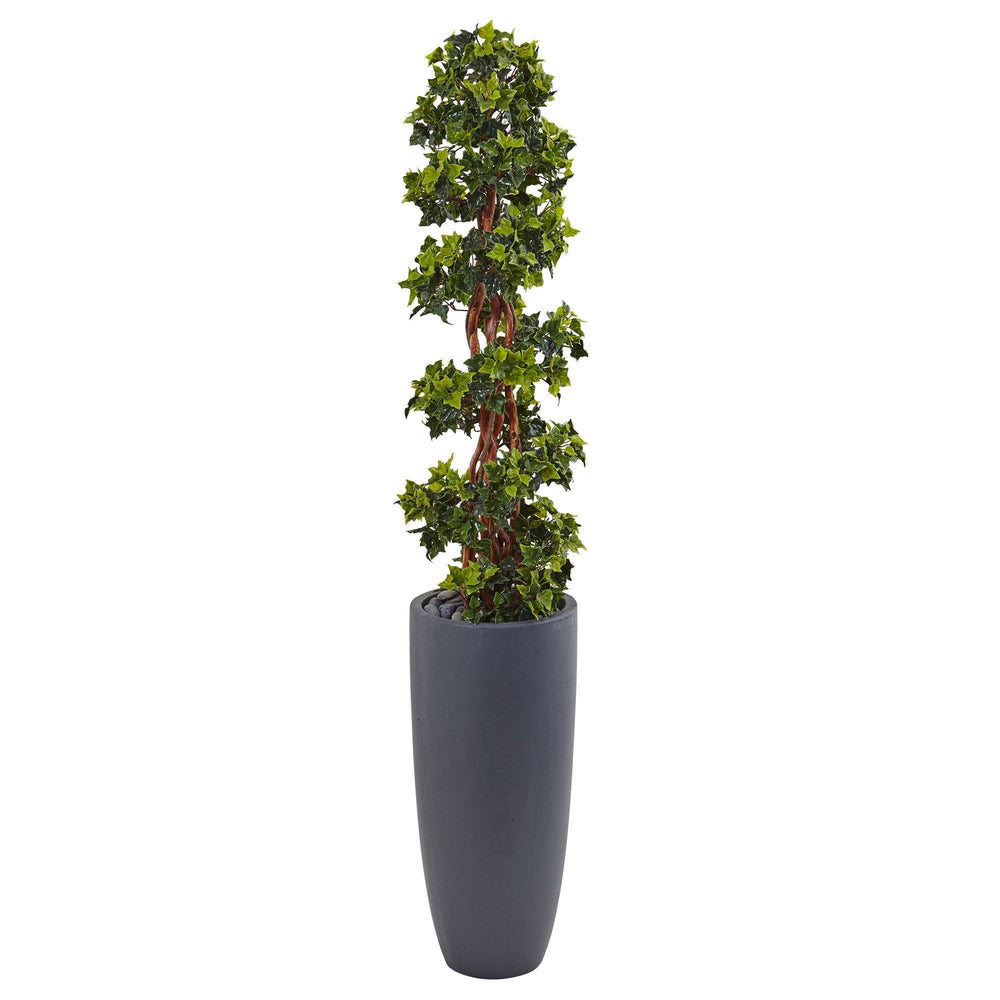5' English Ivy Spiral Topiary Tree in Gray Cylinder Planter UV Resistant (Indoor/Outdoor)