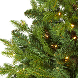 "5' Fraser Fir ""Natural Look"" Artificial Christmas Tree with 190 Clear LED Lights, a Burlap Base and 1217 Bendable Branches"