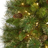 5' Golden Tip Washington Pine Artificial Christmas Tree with 150 Clear Lights, Pine Cones and 432 Bendable Branches