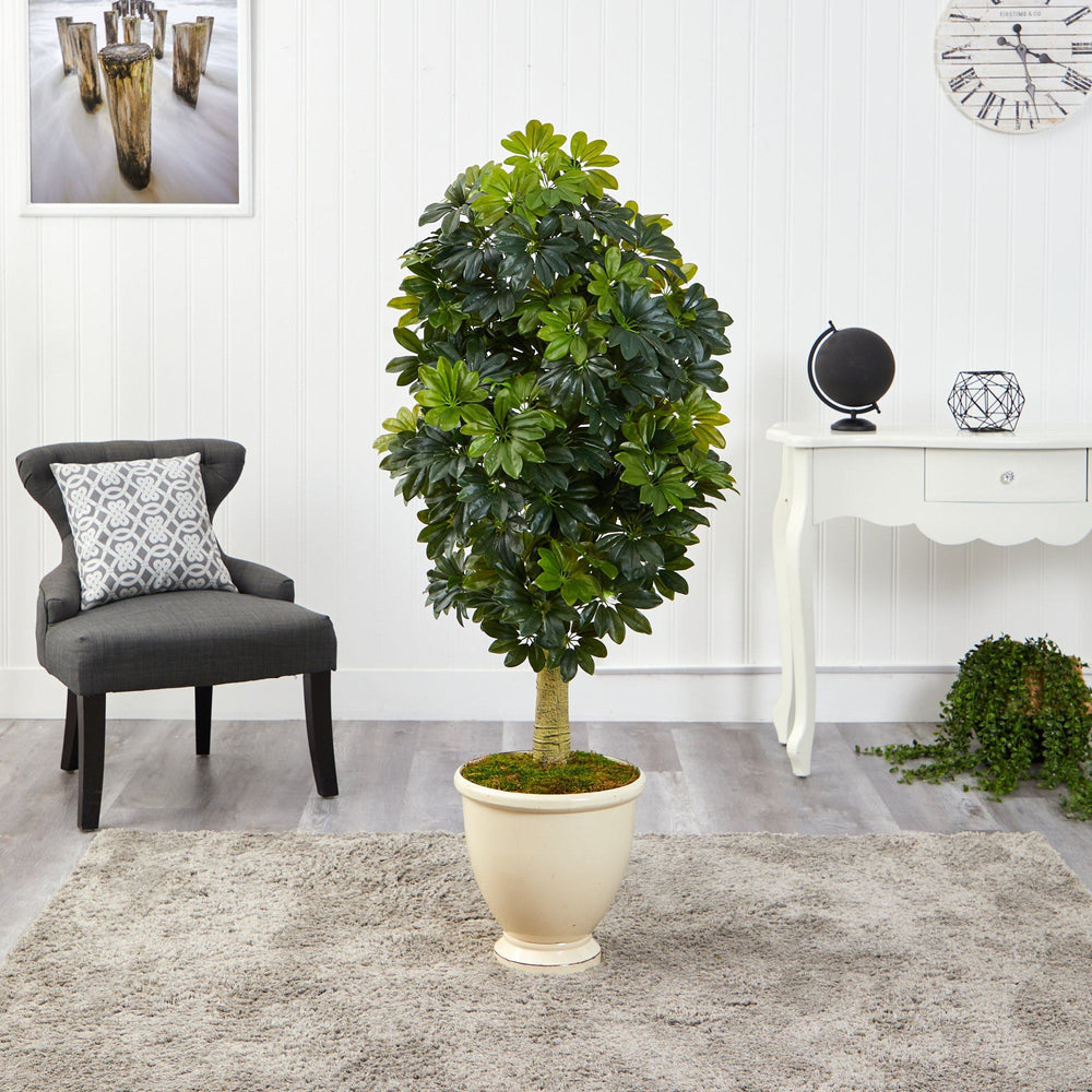5' Schefflera Artificial Tree in Decorative Urn (Real Touch)