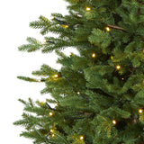 5' Wyoming Spruce Artificial Christmas Tree with 300 Clear LED Lights and 773 Bendable Branches