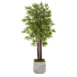 5.5' Bamboo Artificial Tree in White Planter