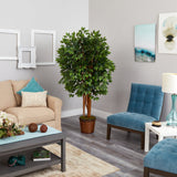 5.5' Super Deluxe Ficus Artificial Tree in Wicker Planter