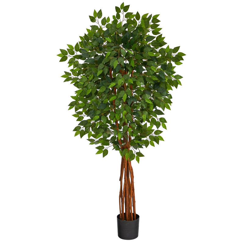 5.5' Super DeluxeNatural Trunk Ficus Artificial Tree with