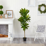"56"" Dracaena Artificial Plant (Real Touch)"