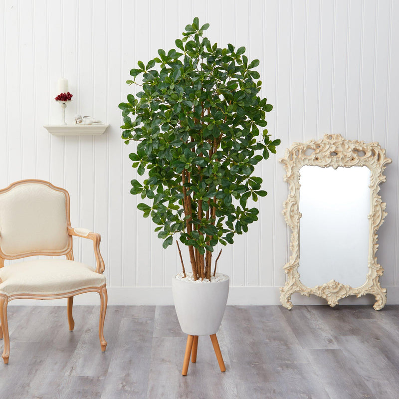 6' Black Olive Artificial Tree in White Planter with Stand