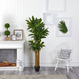 6' Corn Stalk Dracaena Artificial Plant (Real Touch)