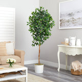 6' Ficus Artificial Tree in White Tin Planter