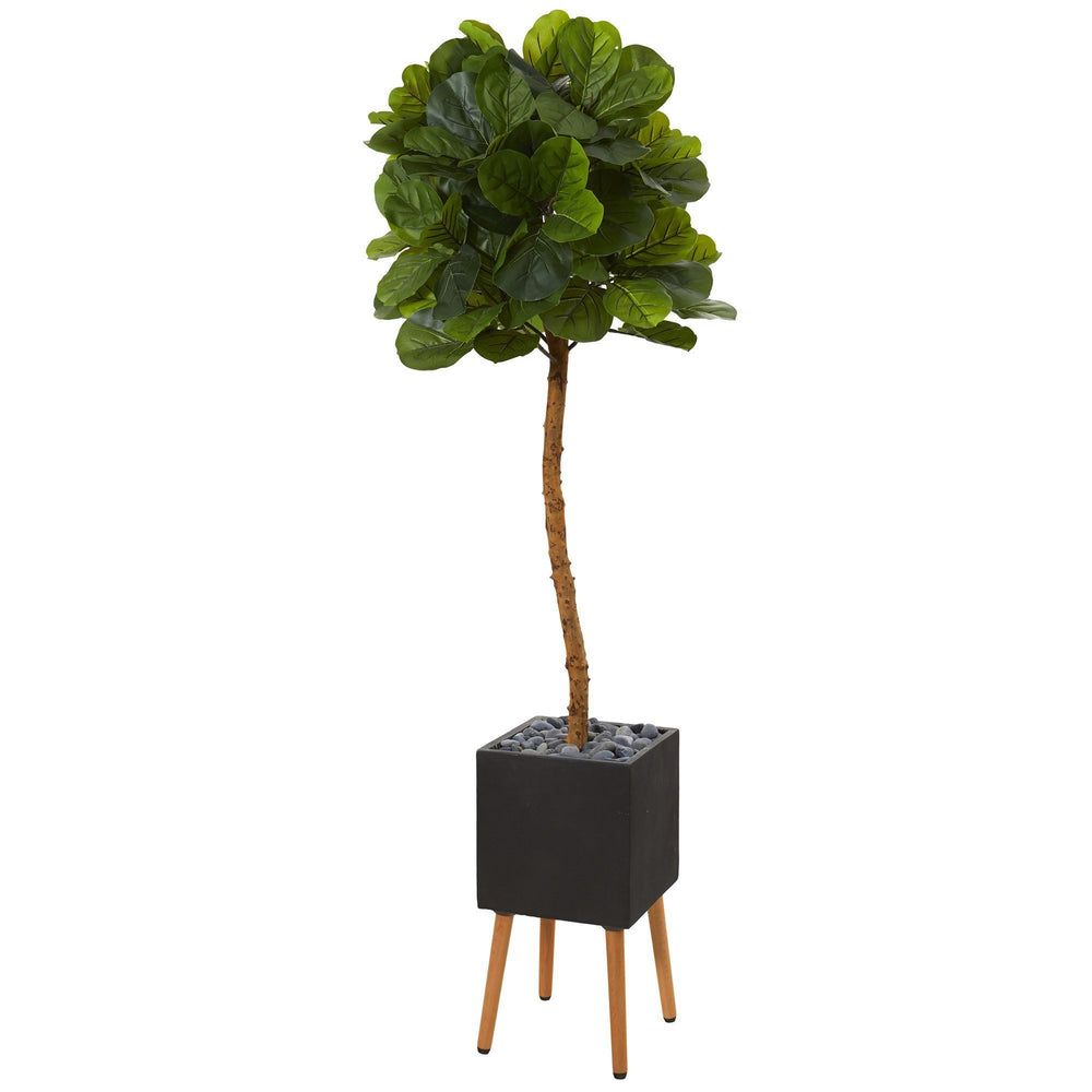 6' Fiddle Leaf Artificial Tree in Black Planter with Stand (Real Touch)