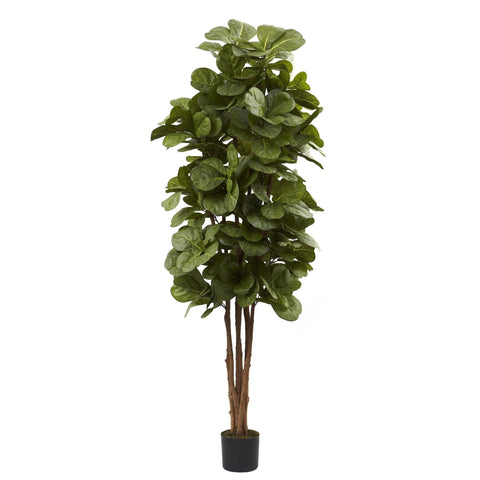 Faux Fiddle Fig Leaf Fig Trees
