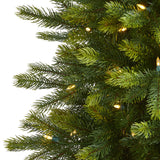 6' Manchester Fir Artificial Christmas Tree in Decorative Planter with 350 Clear Warm (Multifunction) LED Lights and 504 Bendable Branches