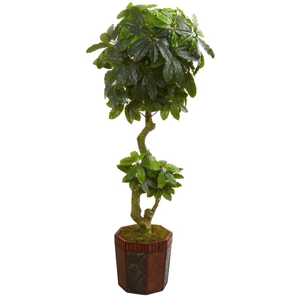 6' Schefflera Artificial Tree in Bamboo Planter