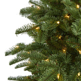 6' South Carolina Fir Artificial Christmas Tree with 450 Clear Lights and 1598 Bendable Branches