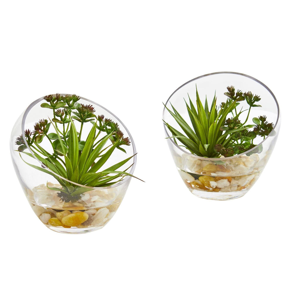 "6"" Spiky Succulent Artificial Plant in Slanted Glass (Set of 2)"