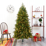 6' Vienna Fir Artificial Christmas Tree with 400 Warm White Lights and 843 Bendable Branches