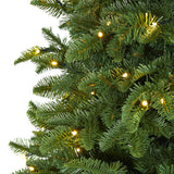 6' Wyoming Fir Artificial Christmas Tree with 350 Clear LED Lights and 844 Bendable Branches