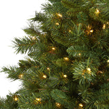 6' Wyoming Mixed Pine Artificial Christmas Tree with 450 Clear Lights and 1090 Bendable Branches