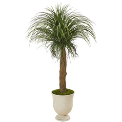 "64"" Pony Tail Palm Artificial Plant in Decorative Urn"