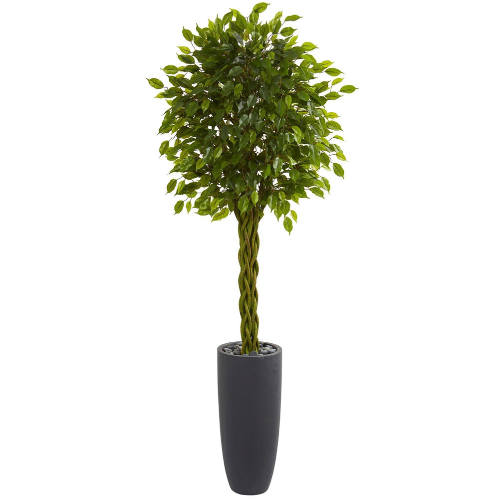 6.5' Braided Ficus Artificial Tree in Cylinder Planter UV Resistant (Indoor/Outdoor)