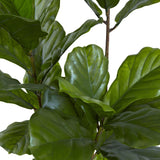 "65"" Fiddle Leaf Tree UV Resistant (Indoor/Outdoor)"