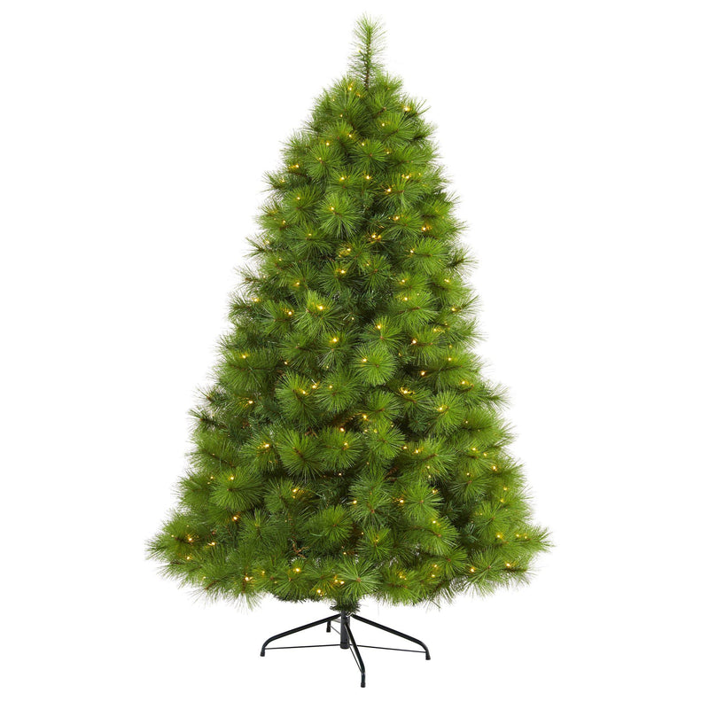 6.5' Green Scotch Pine Artificial Christmas Tree with 350 Clear LED Lights