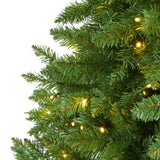 6.5' Green Valley Fir Artificial Christmas Tree with 350 Clear LED Lights 1125 Bendable Branches