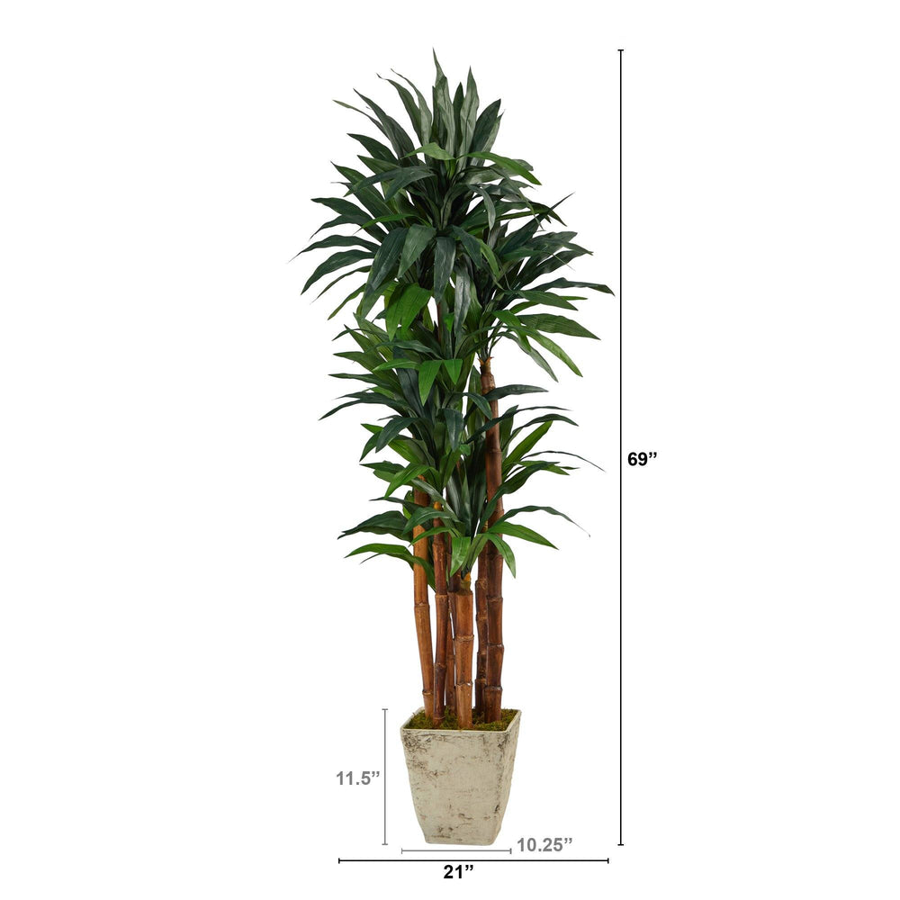 "69"" Dracaena Artificial Tree in Country White Planter"