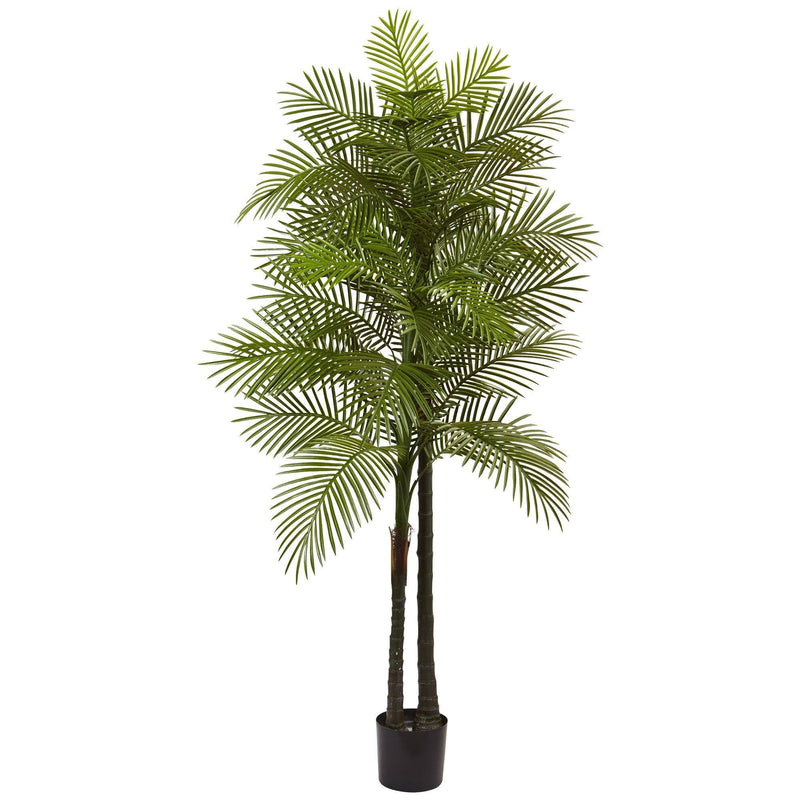 7' Double Robellini Palm Tree UV Resistant (Indoor/Outdoor)