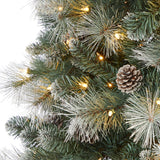 7' Frosted Tip British Columbia Mountain Pine Artificial Christmas Tree with 400 Clear Lights, Pine Cones and 882 Bendable Branches