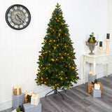 7' Grand Teton Spruce Flat Back Artificial Christmas Tree with 220 Clear LED Lights and 953 Bendable Branches