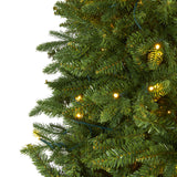 7' New Hampshire Fir Artificial Christmas Tree with 450 Clear LED Lights