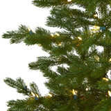 7.5' Fairbanks Fir Artificial Christmas Tree with 350 Clear Warm (Multifunction) LED Lights and 280 Bendable Branches